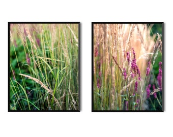 Plants. Set of photo prints or pack of 5 postcards