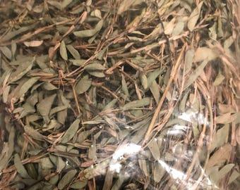 Medina herb tea