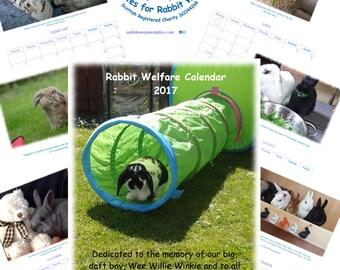Rabbit Welfare Charity Calendar 2017 - pet bunny bunnies