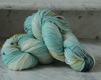 Sandbar Handpainted Superwash Merino Wool Yarn  DK