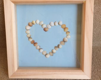 Shell love heart picture