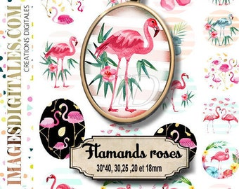 FLAMINGO id Digital Collage Sheet Printable Instant Download for art jewelry scrapbooking bottle caps magnets pins