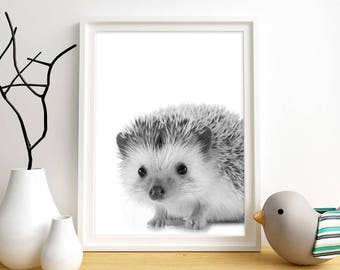 Hedgehog Print, Hedgehog Wall Art, Kid's Wall Art, Woodland Animals Print, Instant Digital Download, Nursery Wall Art, Kids Room Wall Art