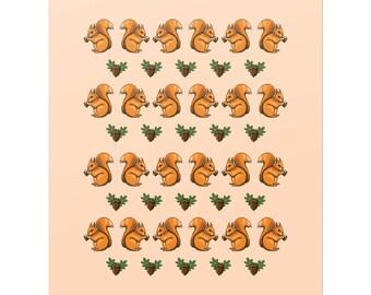 Squirrels & acorns