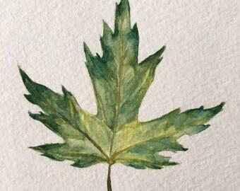 Custom Leaf/Botanical Painting