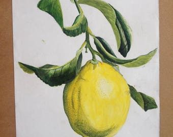 Lemon Drawing,Lemon Painting  Portrait