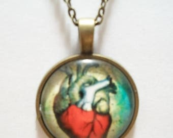Human Heart Glass Cabochon Pendant Necklace SC548