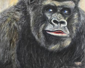 Gorilla blue-eyed