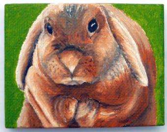 Rabbit - miniature oil painting