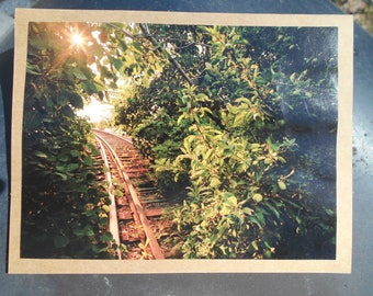 Woodland Train Track Greeting Card