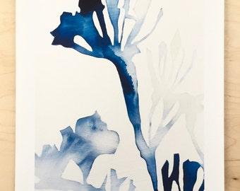 NEW // Milkweed Shadow Print // Modern Decor // Garden Lovers // Plant Paintings // Modern Watercolor // Modern Abstract // Modern Print