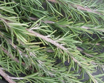 ROSEMARY naturally DRiED FLOWER herb Bunches