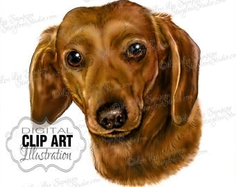 Dachshund Art, Animal Clipart, Dog Clipart Color Illustration, Clip Art Digital Download, Digital Scrapbooking Supplies
