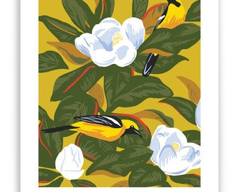 Orioles in Magnolia Tree Art Reproduction