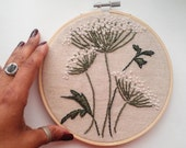 "Embroidery Hoop Queen Anne's Lace Flowers on Unbleached Cotton 6"" READY TO SHIP"