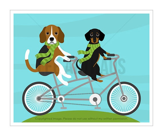 186D Dog Print - Dachshund and Beagle on Bicycle Wall Art - Funny Dog Art - Bicycle Art - Dog Wall Art - Beagle Wall Art - Dog Gift