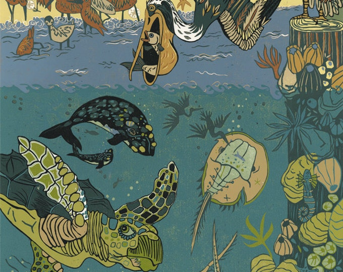 Sea Turtle, Pelican, large wall art, reproduction by Jenny Pope