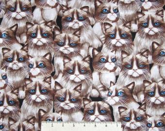 Cat Fabric - Packed Grumpy Cat Faces  - Timeless Treasures YARD