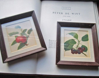 Vintage Botanical Prints * A Pair of Matching Prints * 1940's 1950's Botanical Decor * Art * Kitchen Decor * Wood Frames * Vintage Gifts