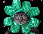 Shamrock hat for cats and dogs