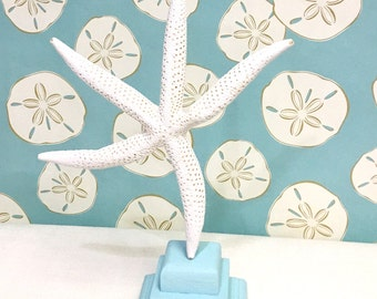 Beach Decor - Large Finger Starfish Mounted on Ivory or Aqua Wooden Stand