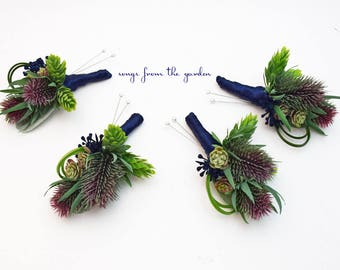 Thistle and Succulent Boutonnieres - Hops Grass Navy Blue Accents - Wedding Groom Groomsmen Boutonnieres Prom Homecoming Boutonniere