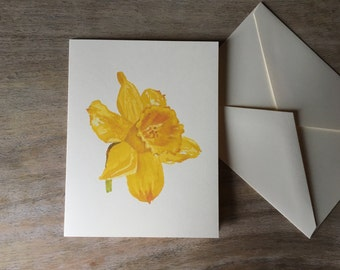 Daffodil Note cards - Watercolor Daffodil Notecards - Artist Notecards - Stationary set - Gift set