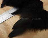 Small Black Craft Feathers Jet Black Hen Feathers 24PACK 1-3""