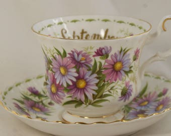 Tea cup and saucer bone china set Royal Albert flower of the month September Michaelmas Daisy made in England