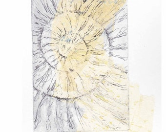 Ammonite fossil etching no.59 with chine colle jurassic Dorset coast fossil spiral fossil ammonites golden section