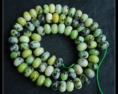 Reserved For Anna!Natural Serpentine Gemstone Coin Beads,1 Strand, 40cm in Length,39.47g