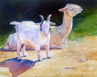 Dudes at the Ranch, original watercolor farm animals, llama, goat, gift for dad