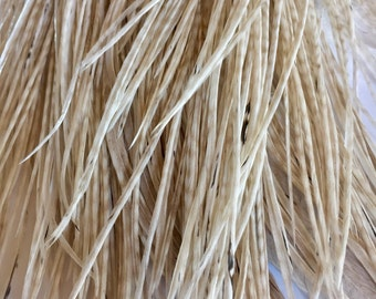 1 Dozen 9 inch Barred White Cream Tan LONG Grizzly Rooster Feathers