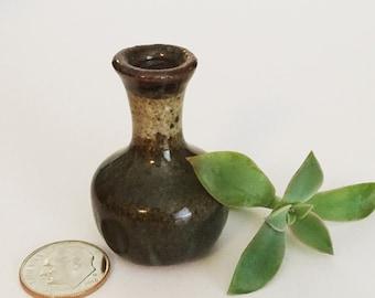 Spring Succulent Miniature Vase