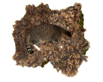 Wool Cat Bed -  Dog Bed - Cruelty Free Felted Wool Fleece Pet Rug - Dorset Suffolk Cross - Ready to Ship - Supporting US Small Farms
