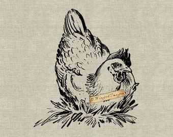 Chicken in Her Nest. Instant Download Digital Image No.391 Iron-On Transfer to Fabric (burlap, linen) Paper Prints (cards, tags)