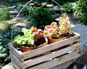 Wood Slat Box Carrier with Wire Handle, Vintage Weathered Planter, Garden Tool Carry All, Primitive Wooden Box, Garden Decor itsyourcountry