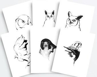 Aviary - 6 Pack - Blank Bird Greeting Cards