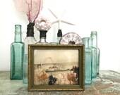 Vintage Oregon Dry Sea Moss and Picture Souvenir