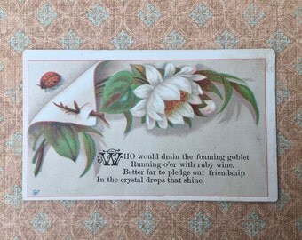 Lovely Little Victorian Calling Card with Ladybug