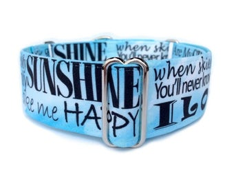 You Are My Sunshine Dog Collar - Martingale Dog Collar or Buckle Dog Collar