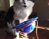 Love the blues...fused candle holder...candy dish...kitty food dish