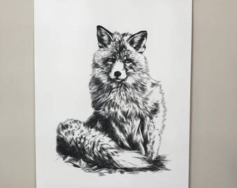 Little Fox black and white Hand-drawn Canvas Print A2