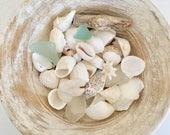 sea shells, beach decor, sea glass, beachcomber home decor, coastal style
