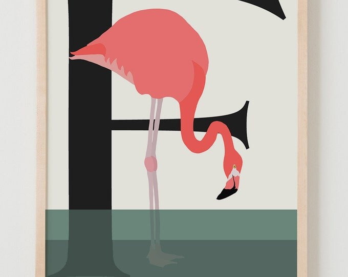 Animal Alphabet, F is for Flamingo Fine Art Print
