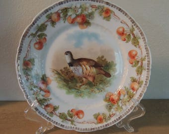 Antique Porcelain Game Bird Plate 8.25 Inches Made in Germany C. Tielsch & Co. Early 1900s Cherry Border Gold Band Antique Gift Wall Decor
