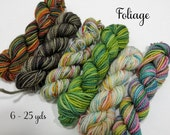 Foliage - 6 - 25  Mini Sock Skeins, 25 yds each, 150 yds total