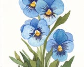 Blue Pansies Watercolor Garden Reproduction