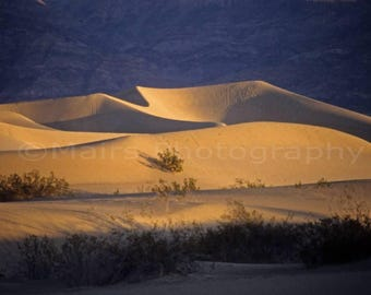 Death Valley Sunrise Layers Sanddunes Golden Light California Inyo County Travel Photography Original 5x7 signed matted photograph