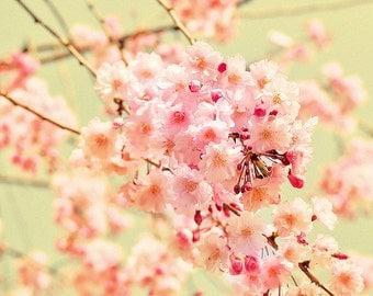 Fleece Blanket Photography Cherry Blossom Art Nursery Blanket  Floral Print , Custom Bedding, Gift For Her Spring Decor